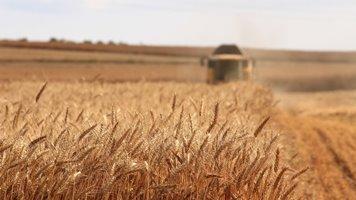 Aumento della qualità del raccolto